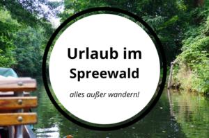 Read more about the article Urlaub im Spreewald – alles außer wandern! (340KM)